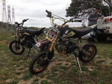 Atomik 125cc thumpster/pit bike Hampton Park Casey Area Preview