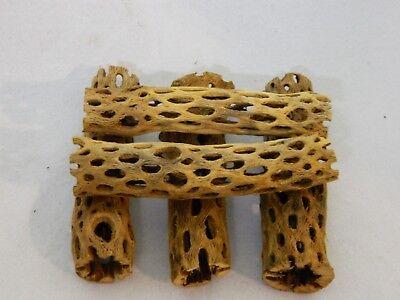 5  Pieces  6 - 7 in. Cholla Wood Cactus Organic Fish Reptiles Crabs Birds craft
