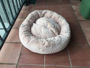 Cat or Dog Bed Northcote Darebin Area Preview