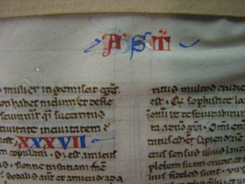 Circa 1240 13th Century Medieval Italian Bible Manuscript Leaf Vellum Latin RARE