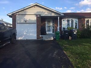 3 BED RM. BUNGALOW FOR RENT. DIXIE RD/BOVAIRD  DR,BRAMPTON