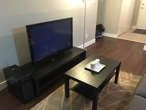 1 Bedroom Apartment- ***NEED GONE ASAP