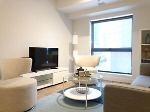 3 1/2 Downtown + Electricity + Hot water + Internet +1month FREE
