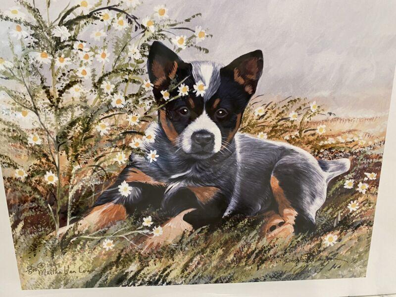 australian cattle dog Ltd Ed 11x14 Signed Print By Van Loan