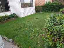 Gardener required Earlwood Canterbury Area Preview