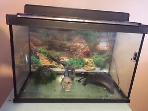 30gallon tank and accessories