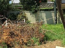 Need it cleared ASAP Homebush West Strathfield Area Preview