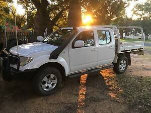 2011 Nissan Navara Ute Bell Dalby Area Preview