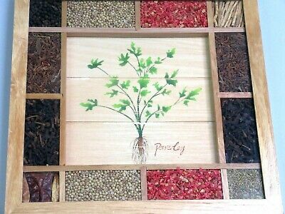 Framed Natural Seeds & Herbs Parsley Wooden Wall Art Farm House Chic By Sixtrees