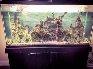 Selling aquarium with all accessories