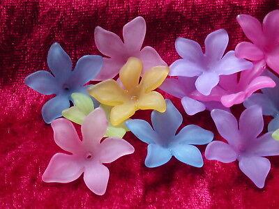 28mm Perle (10 Acryl Blüten Kelche Farb Mix 28 mm Perlen basteln)