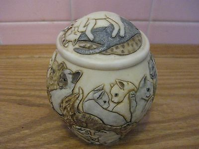 EUC Harmony Kingdom Jardinia Cats Galore Trinket Box or Jar with 3D Cats