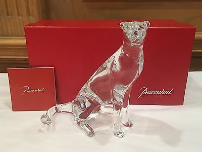 """BACCARAT FRANCE - SIGNED LOET VANDERVEEN """"PANTHER"""", MINT IN BOX, VERY SPECIAL!!"""