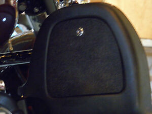 PAIR Lower Fairing Locking Glovebox Doors Harley Davidson, Touring,ABS