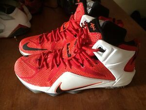 NIKE LEBRON 12 (LION COLOURWAY