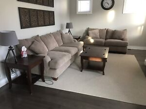 Putty Chenille sofa and love seat