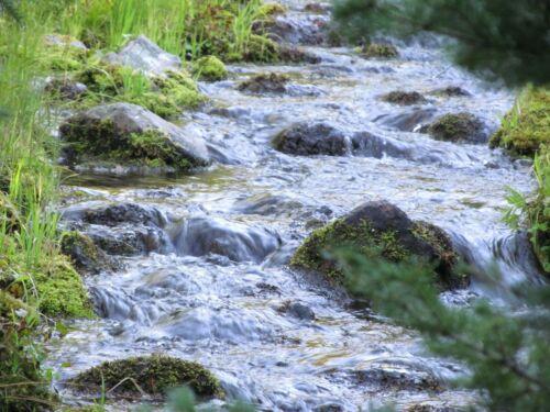 Montana Sapphire Mine Silver Gold Beaver Creek Placer Gem Mining Claim Au Ag MT
