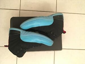 Air Jordan 'Gamma Blue' 12's Size 10