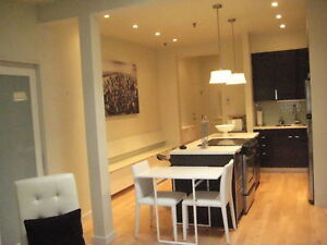 2 BR Furnished Executive Suite - Downtown September