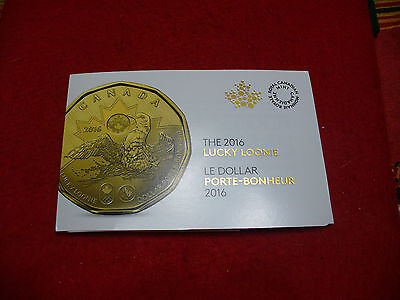 5 COINS  2016  CANADA   DOLLAR  COIN   LUCKY LOONIE PROOF LIKE SEALED COINS