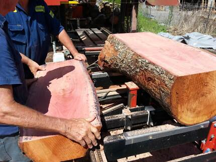 Australian Red Cedar timber beautiful grain various sizes Cooroy Noosa Area Preview