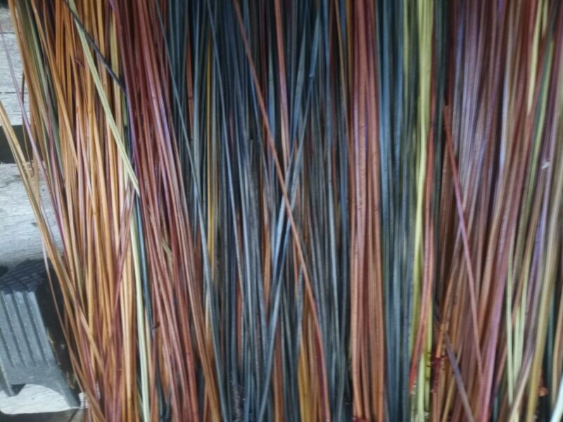 """long leaf pine needles  dyed multi color 13 to 17"""""""