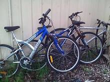 2 bikes + spares Maryland 2287 Newcastle Area Preview