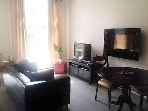 Loft de luxe meublé