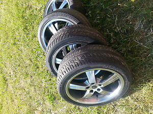 looking to trade rims for foxbody parts!