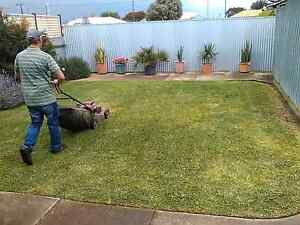!!!!KISS MY GRASS!!! Glenelg South Holdfast Bay Preview