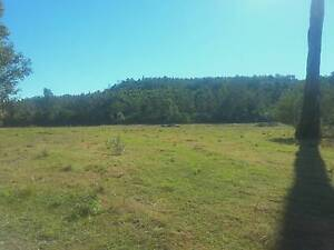BEAUTIFUL 70 ACRES / CREEK / GRAZING /PLANTATION/ NORTH COAST NSW Tabulam Tenterfield Area Preview