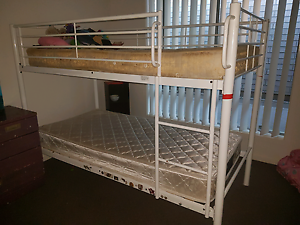 Bunk bed cheap!! Mango Hill Pine Rivers Area Preview