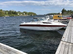 Honda BF 75 4 stroke on 20 ft speed boat with cuddy