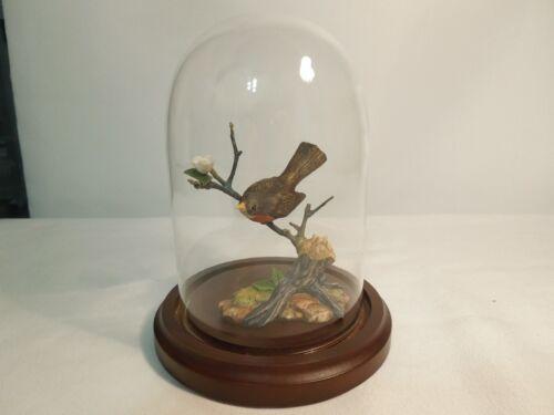 Porcelain & Bronze Figurine The American Robin w/ Wood Base & Glass Dome Enesco