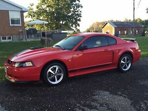 Mach 1 Mustang - mint condition
