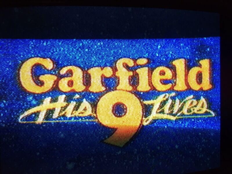 Garfield 9 Lives + Charlie Brown + Cathy TV VHS sold as BLANK W/ commercials