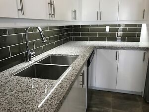 Newly Reno'd Condo Quality 2 Bedroom, ALL UTILITIES Included!