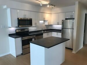 Fully Renovated 2 Bed on Barrington/Tobin St! Park View!