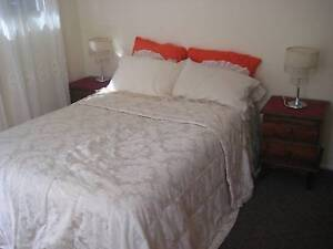 Hamilton Sunny room w. comfy bed for short term $65pd or 270pw Hamilton Newcastle Area Preview
