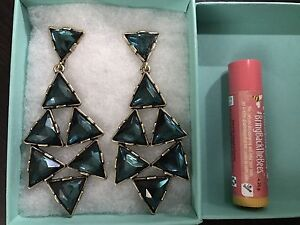 Oscar de la Renta Brand New Earrings and Pin