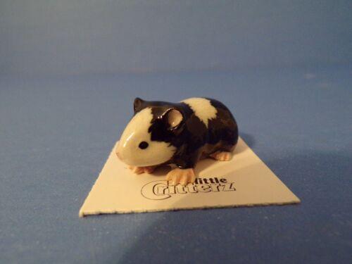 "Little Critterz Guinea Pig ""Ziggy"" Porcelain Figurine LC709"