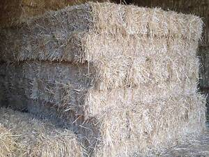 STRAW BALES for building sites Camden Camden Area Preview