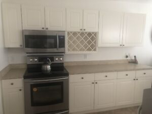 Kitchen or garage/extra cabinets/countertop