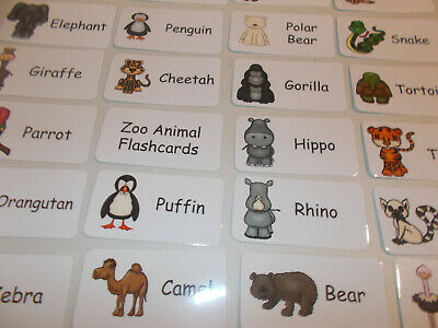 Zoo Animals Flash Cards. Preschool Picture and Word Flash Cards for children.
