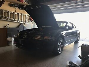 Looking for 99-04 4.6L Mustang Parts