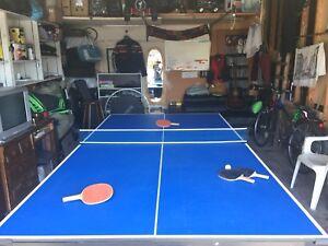 Table Tennis Table w Net Paddles Balls Best Offer
