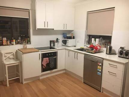 Room available in Braddon - GREAT location! Braddon North Canberra Preview