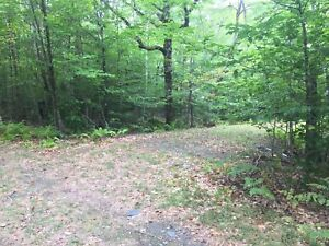 Secluded Vacant Lot with Driveway - Molega