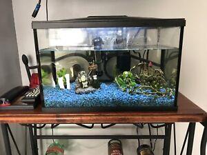 Aquarium avec tout ses accessoires
