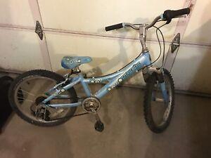 Trek girls bike